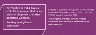 Infographic that explains eligibility and funding for the autism flexible services program.