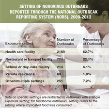Infographic that shows the total number and overall percentage of Norovirus outbreaks by location.