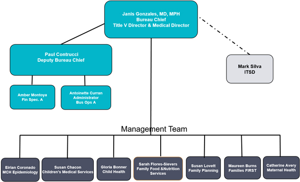 Current organizational chart for the family health bureau.