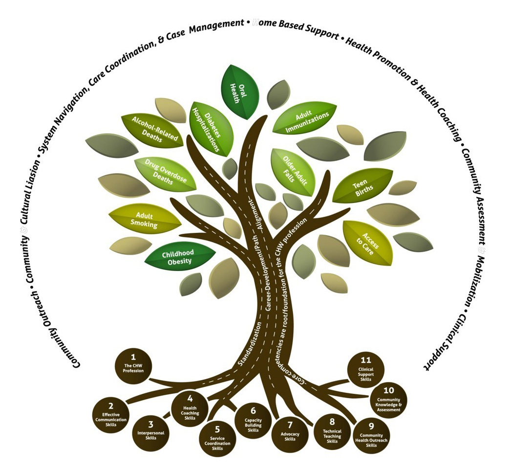 Community health workers tree describing the relationship of the many aspects of community health pooptronica
