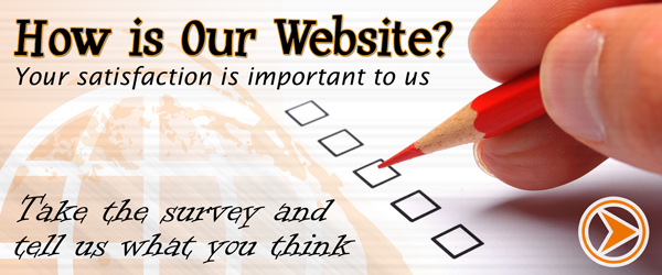 Website Satisfaction Survey Image