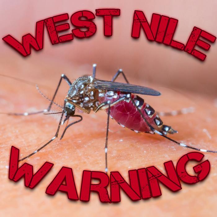 Take Precautions to Prevent Mosquito Bites