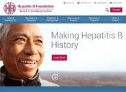 hepatitis b virus treatment guidelines