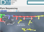 DNA Tube Pyrosequencing Video